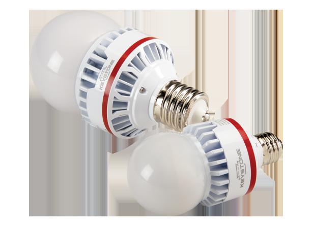 A25 and A21 LED bulb