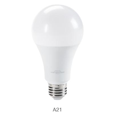 A21 LED bulb