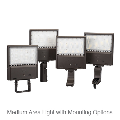 Medium Area Light with Mounting Options